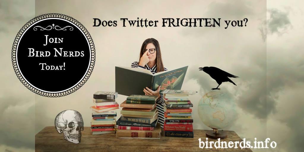 Twitter frighten