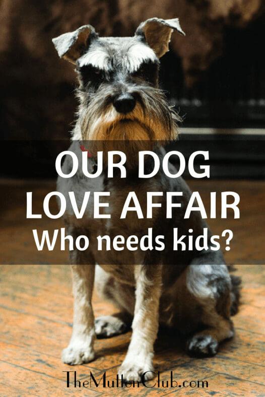 our dog love affair
